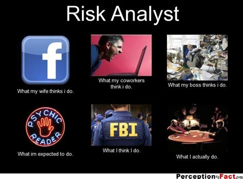 Risk Analyst by Risk Analyst What Think I Do What I Really Do Perception Vs Fact