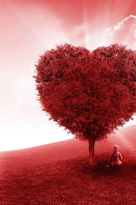 wallpaper love heart tree landscape kid  creative