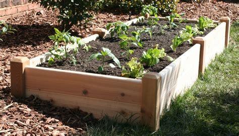 raised garden bed designs keeping your garden warm in winter palmers garden centre