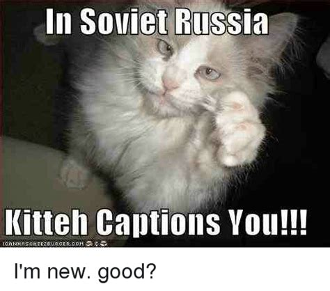 in soviet russia kitten captions you i m new good