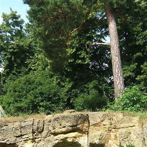 blankenburg harz barokke tuinen en theetuin overzichtskaart