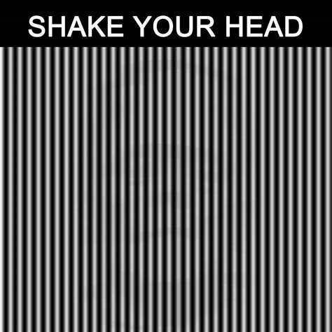 how to your to shake shake your illusion images images