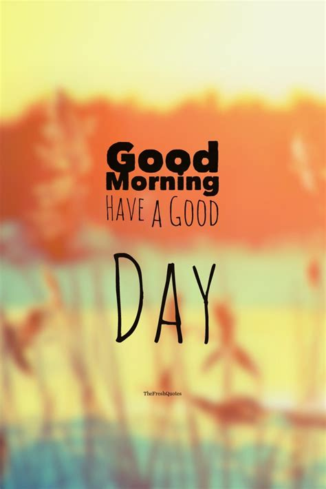 72 beautiful morning quotes and wishes thefreshquotes