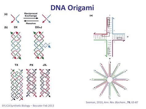 Dna Origami - omics discussion in nature ppt