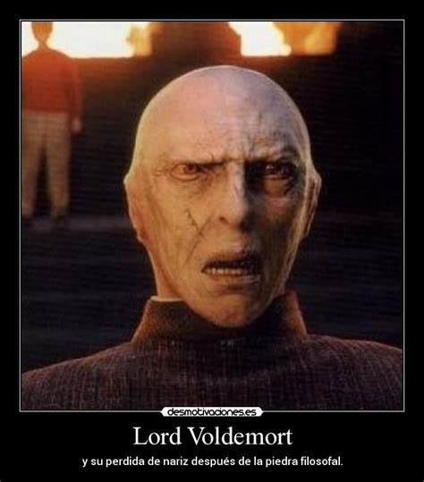 Voldemort Meme - the gallery for gt ralph fiennes voldemort with nose