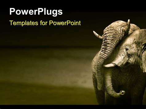 Powerpoint Template An Elephant With A Grayish Background 11077 Elephant Powerpoint Template