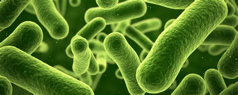 chemical  microbial substances rti