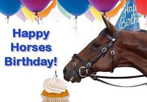 happy birthday wishes to all our dynamic horses dean