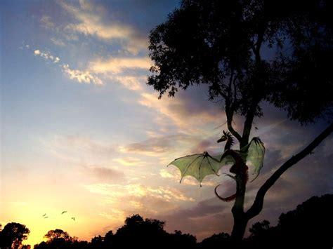 imagenes para fondo de pantalla dragones fondos de pantalla gt imagenes gt dragones al amanecer