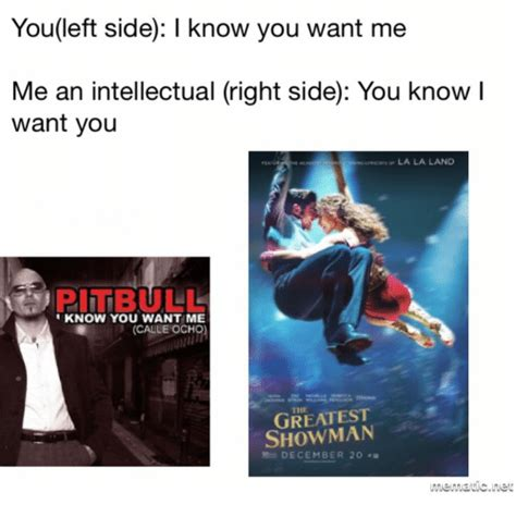 I Know You Want Me Meme - youleft side i know you want me me an intellectual right