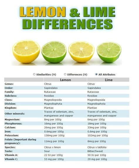 Limes Vs Lemons Detox by Lemon Vs Lime Nutrition Limes And Lemon