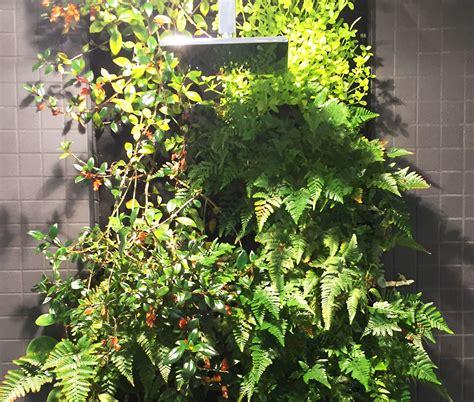 indoor garden melbourne abey showrooms albert park indoor florafelt fytogreen