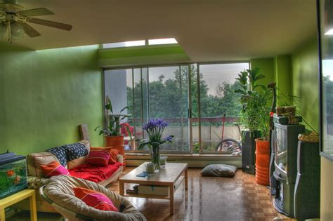 living room designs with plants home design