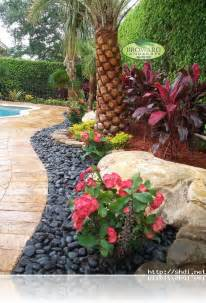 Tropical front yard landscaping ideas with palm trees