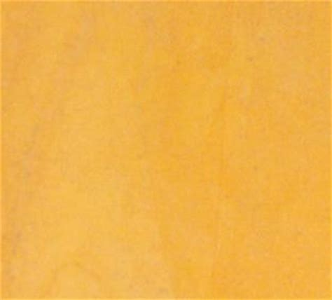 jaisalmer yellow sandstone in sukher udaipur rajasthan india modi international