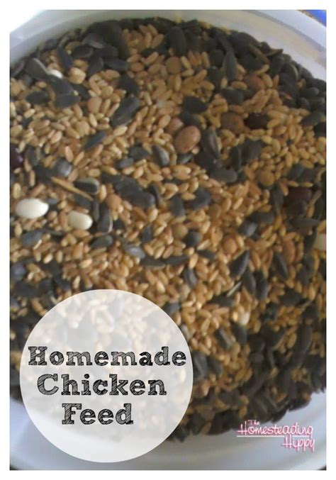 rituals and recipes to nourish the and feed the soul books chicken feed the homesteading hippy