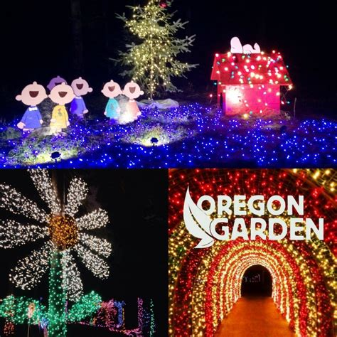 oregon garden lights social media catch up week 5 november 2015