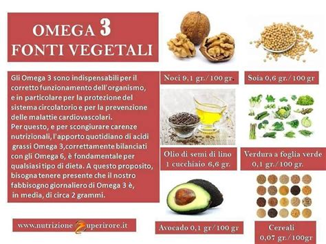 omega 6 in quali alimenti 187 fonti di omega 3