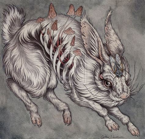 rabbit tattoo pen for sale caitlin hackett google search tatueringar pinterest