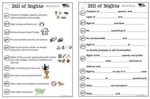 bill of rights the wise nest