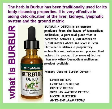 Lyme Detox Supplements by 21 Best Testimonials Images On Lyme Disease