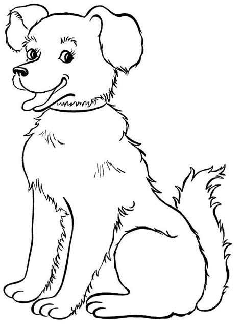 color coloring pages draw  dog  kids concept