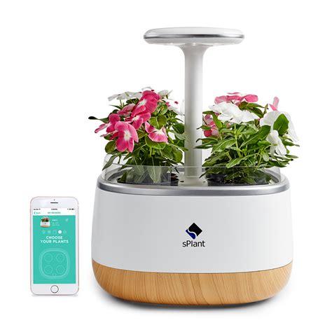 smart herb garden splant smart fresh herb garden kit intelligent indoor