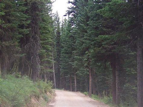 idaho s magruder corridor wilderness road