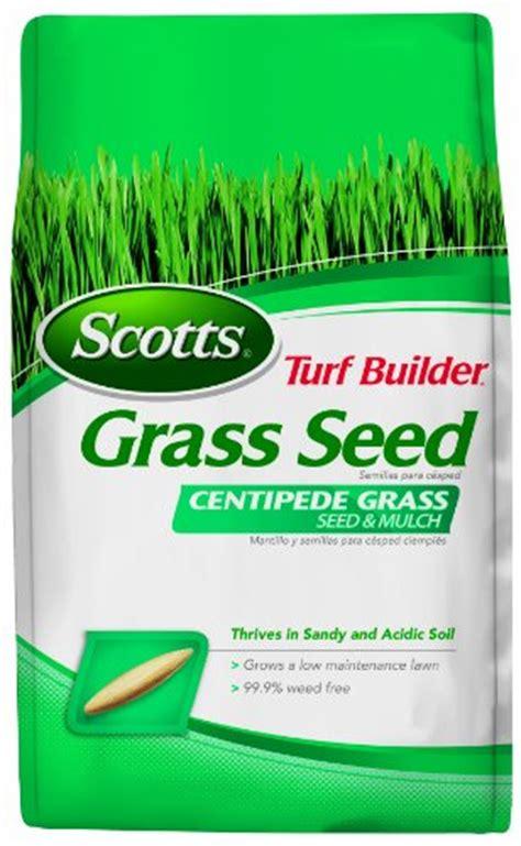 buy scotts 18362 turf builder zoysia grass seed and mulch 5 pound onsale gardening grass