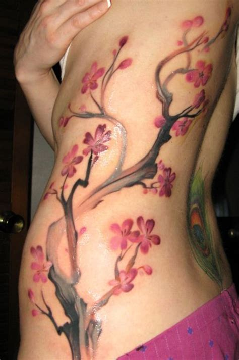 cherry blossom tattoo on side cherry blossom tree branch pictures at