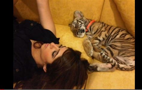 Maryam No Pet tigers and other pets pose problems ums in the uae