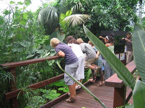 casa delle farfalle casa delle farfalle c informazioni foto