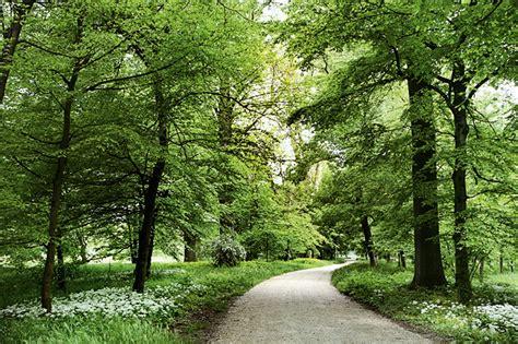 famosi giardini di firenze i 10 parchi pi 249 belli d italia 2010 arketipo