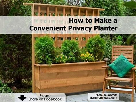 This House Privacy Planter by How To Make A Convenient Privacy Planter