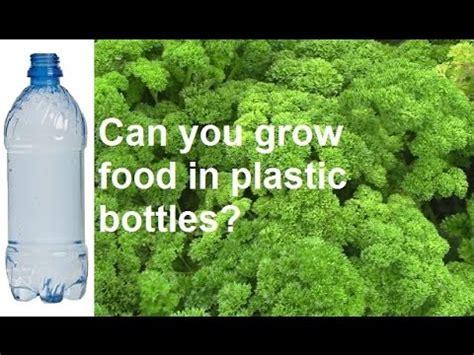 grow vegetables  plastic drink bottles youtube