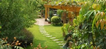 Amenagement Petit Jardin Exotique
