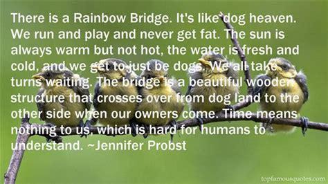 2219 best rainbow bridge images on quote rainbow bridge quotes best 6 quotes about rainbow