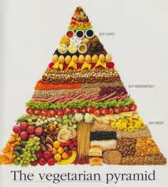 vegetarian diets how can vegetarians eat a balanced diet health and wellness today