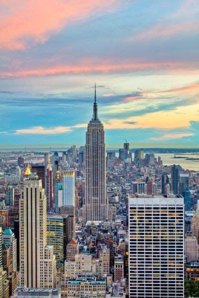 New York by New York Habitat