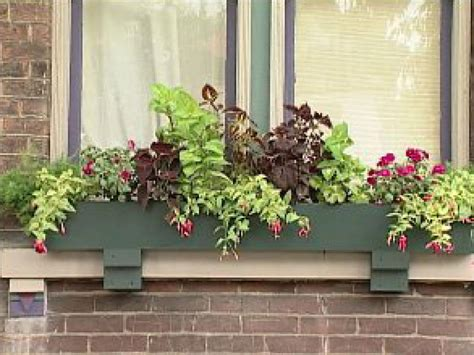 Best Window For Plants Planting Window Boxes For Shade Diy