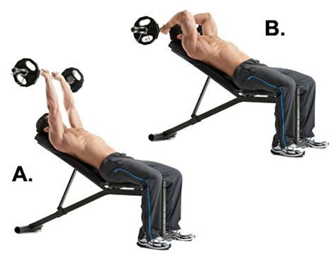 tricep extension bench the best new exercises for every part of a man s body