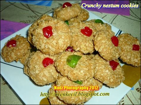 Oven Pembakar Biskut oven small kitchen biskut nestum rangup crunchy