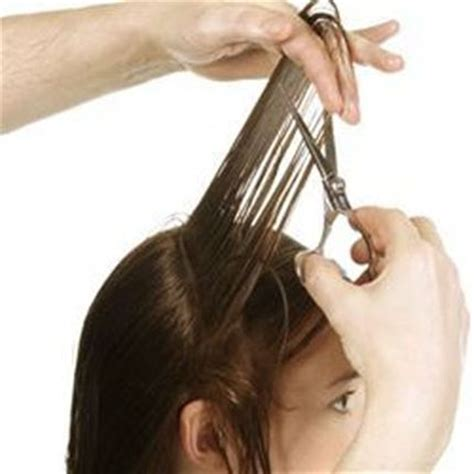 hair cutting techniques for concave best hair style different types of haircuts