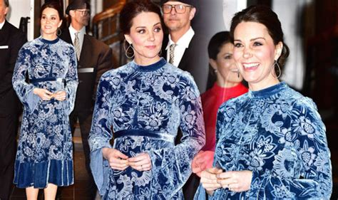 Expensive Designer Are Costing Even More by Kate Middleton Stuns In An Erdem Dress Even More Expensive