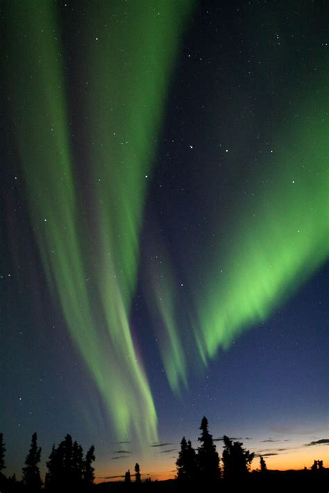 northern lights forecast fairbanks viewing borealis lodge