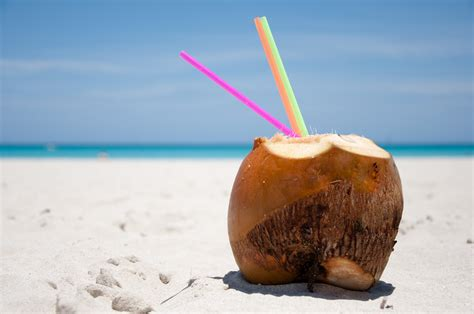 a coconut on the how to guides