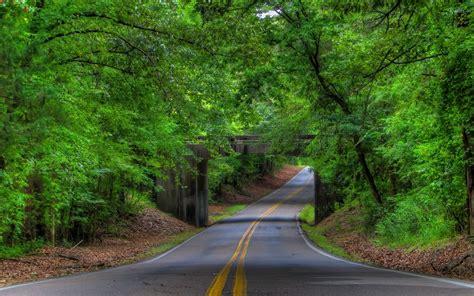 wallpaper green road road under the stone forest bridge wallpaper nature