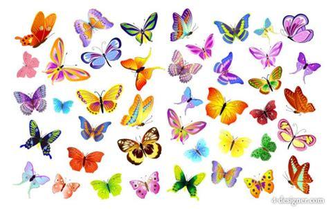Xuping Set Kupu Kupu Free Box 4 designer butterflies vector material