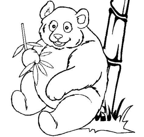giant panda coloring page animals town animal color