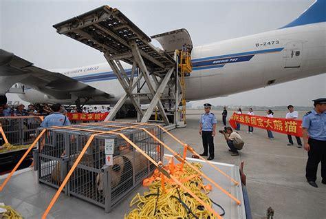 唐翼 网上货运系统 csn cargo